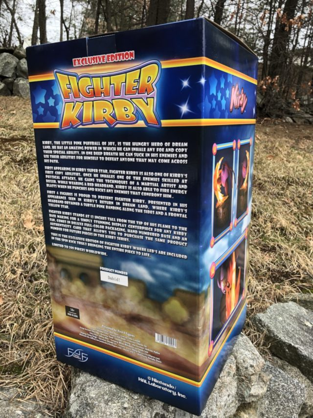 Back of Fighter Kirby First4Figures Exclusive Box